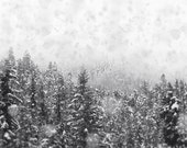 Winter Photograph, Black and White Landscape Photography, 20x24 Wall Art, Ski Lodge Decor, Snow Picture, Whistler Mountain Home Decor