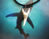 """Shark Tooth Necklace, Modern day Mako Shark tooth, Stainless Steel wire wrap, 20"""" Suede Leather cord"""