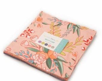Tucker Prairie - Layer Cake of 38 prints - One Canoe Two for Moda - 36000LC
