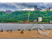 Pittsburgh, north shore, pa, ducks, duquesne Incline, ohio river, cloudy, ambiance, atmosphere, tranquil, relaxing, green, summer, beauty