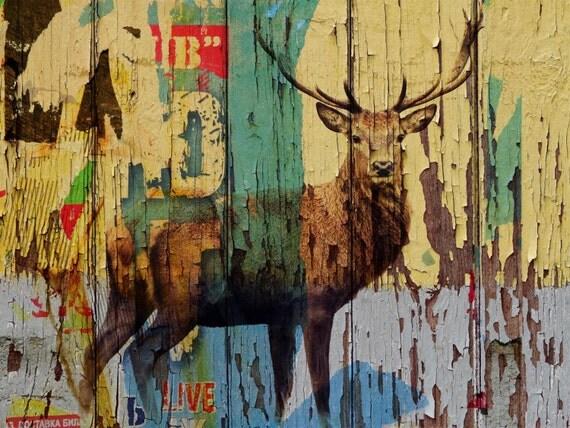 "Deer. Canvas Print by Irena Orlov 24x36"""