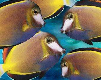 Powder Brown Tangs TROPICAL FISH, Nautical, Beach Decor, Coastal Style, Marine, Fish Art Print, Ocean Art, Coastal, Available on Canvas