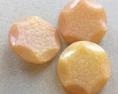 large vintage celluloid apricot pink yellow shank coat buttons with fern and starfruit design--matching lot of 3