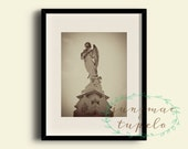 New Orleans Cemetery Angel 2 - Photo Print - 8x10