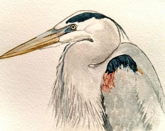 Great Blue Heron Watercolor Painting/ Blue Heron Watercolor/ Heron Watercolor/ Blue Heron Art .