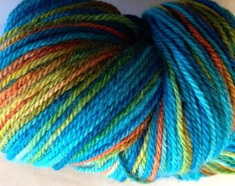Parrot Hand Dyed fingering yarn