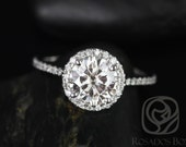 Kimberly 7.5mm Platinum Round FB Moissanite and Diamonds Halo Engagement Ring (Other metals and stone options available)