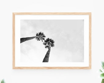 Palm Tree Printable Wall Art Beach Sky Instant Download Landscape Black and White Photo Wall Decor Modern Wall Art Printable Art Poster