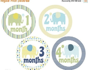 Sale Monthly Baby Stickers Elephants Monthly Stickers Baby Boy Stickers Milestone Stickers Baby Monthly Stickers Boy Month Stickers