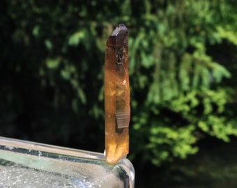 Natural Citrine Crystal w/ Smokey Phantom from the Congo no.45