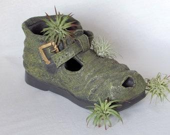 Old Shoe Planter