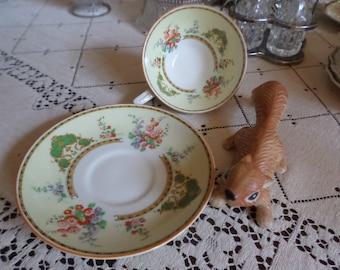 Myott England Hollyhock Teacup and Saucer Set-Multi Colord Floral-Porcelain Slip