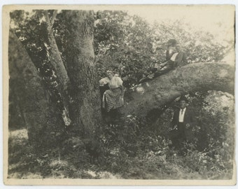 August 18, 1907: Two Men & Woman Posed with Unusual Tree Vintage Snapshot Photo (61450)