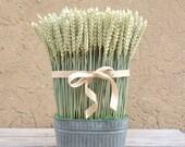 Dried Floral Arrangement-Wheat-Modern Home Decor-Wheat Sheaf-Rustic Home Decor-Wheat-Dried Wheat Arrangement-Rustic Centerpiece
