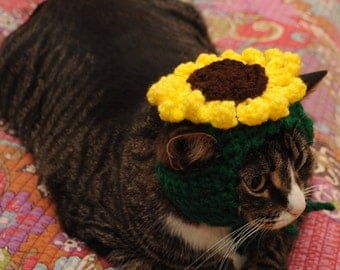 Sunflower Cat Hat