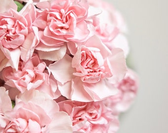 Soft Pink Carnation Bouquet, Macro Floral Photography, Wall Art, Home Decor