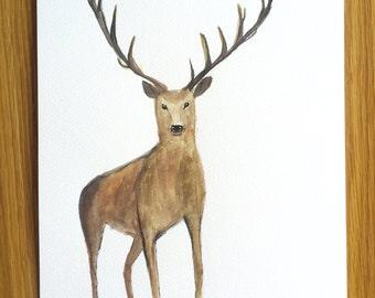SALE Deer art deer original watercolour painting, woodland animals 9 X 12 inches