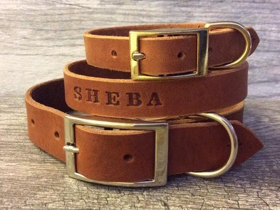 brown leather personalized dog collar