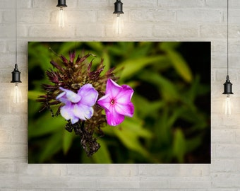 Pink Flower Canvas Art, wall art canvas, canvas print, nature art, nature photography, nature prints