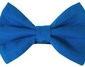 Cobalt cat bow tie & dog bow tie, blue