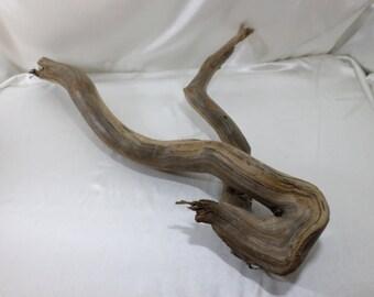 Amazing One-of-a-Kind! Large Driftwood - Large Driftwood Sculpture - Driftwood Art Piece - Driftwood Beach Decor - Amazing Rare Piece!