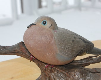 Mourning Dove Songbird