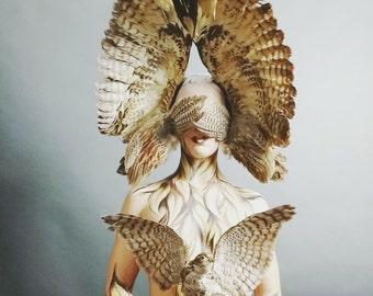 Owl bird wing headdress headpiece