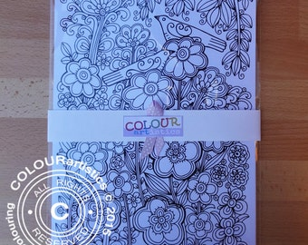 Adult Coloring Sheets Pretty Birds, A4 Colouring Sheets, Colouring Pages, Adult Colouring, Colouring Pictures to Frame