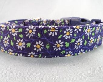 Daisy Dog Collar Daisy Chain on Blue