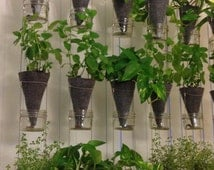A suspended vertical garden (1 column made of 3 plant containers)