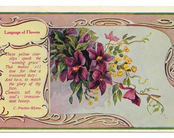 Language of Flowers Postcard,  c. 1910