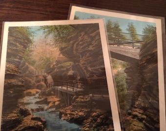 Watkins Glen New York Vintage Postcard Lot (unused)