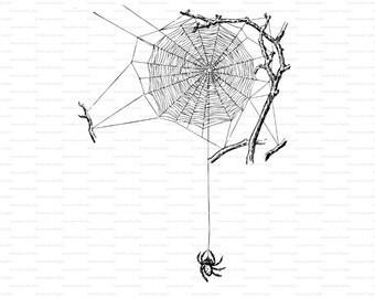 Spider on Web Digital Illustration Spider Web Graphic Digital Spider Printable Spider Halloween  Spider Clip Art HS3