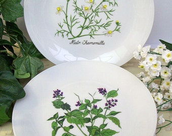 Vintage 1960's-1970's SELTMANN Weiden Bavaria – West Germany – 3 Porcelain BOTANICAL Plates – Salad or Dessert -