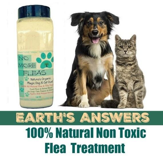 Flea repellent for kittens