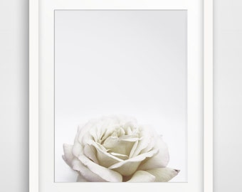 Spring Photography, White Decor, Flowers Photo, Flower Photography, Shabby Chic Wall Decor, Spring Flowers, Spring Decor, Floral Decor