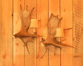 Antler lighting since 1988,real Moose antler sconce,rustic decor,antler decor,custom antler lighting, antler lighting,antler chandeliers,