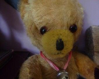 Lovely old Pedigree bear.