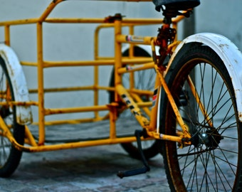 Carrier Bike - Mexico - Photography - Wall Art
