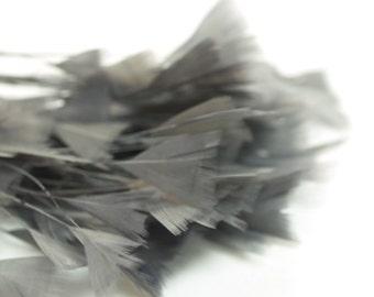 80pc x Bulk Millinery Feathers - Grey