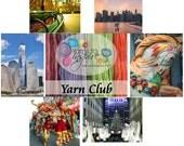 Yarns to Inspire Yarn Club: 3 Months Single Skein Option