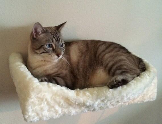Personalizzate carica: Ingresso centrato sul letto gatto