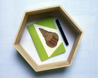 Book shell, green anise CROK'BOOK customized.