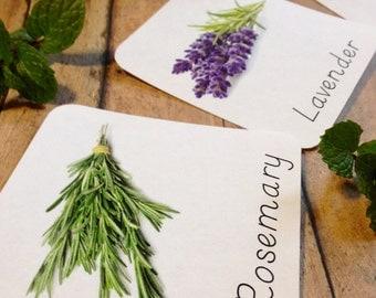 Herb garden 3 part cards