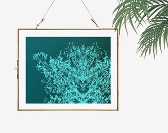Teal photograph fantasy modern wall decor bedroom green room decor wall art home office tree photography nature artwork turquoise wall art