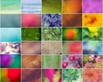 The Botanical Collection - Hawaii Overlays for Photoshop