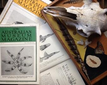 The Australian Museum Magazine