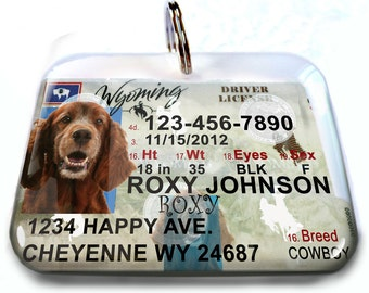 Wyoming driver license Personalized Custom ID Tags for dogs and cats Double Sided pet tags