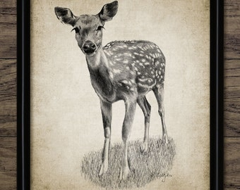 Vintage Fawn Deer Print - Fawn Deer Illustration - Fawn Deer Decor - Digital Art - Printable Art - Single Print #636 - INSTANT DOWNLOAD