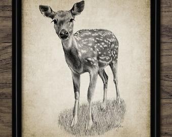 Vintage Fawn Deer Print - Fawn Deer Illustration - Fawn Deer Decor - Digital Art - Printable Art - Single Print #636 - INSTANT DOWNLOAD